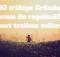 20 Gründe