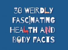30 Fakten